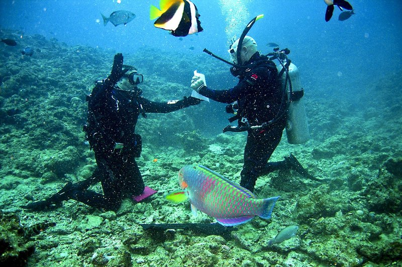 Dive Trip Packing List - The Ultimate Packing Guide For A Costa Rica Dive Vacation